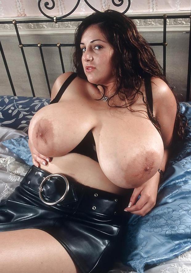 Free chubby big tits